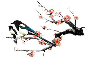 国画梅花喜鹊