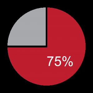 時尚百分之75扇形圖表