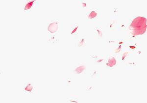 粉色情人節漂浮花瓣