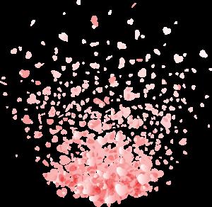 情人節七夕漂浮的鮮花