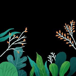 手繪插畫綠色植物
