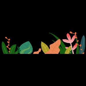 花草手繪卡通裝飾五彩邊框夏天植